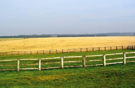 Zäune vor grünen und gelben Wiesen